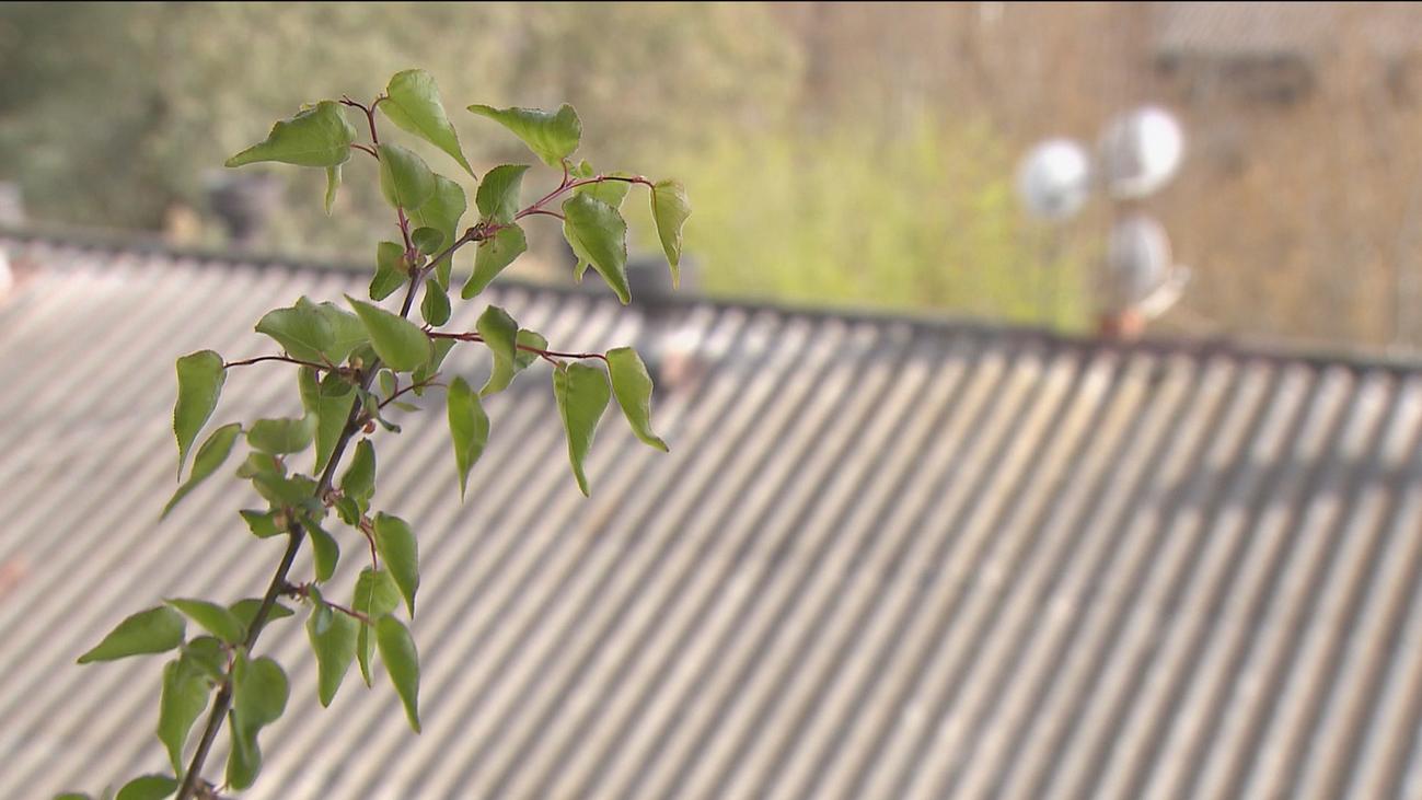 Orcasitas, el primer barrio de España que empieza a retirar el amianto de sus tejados