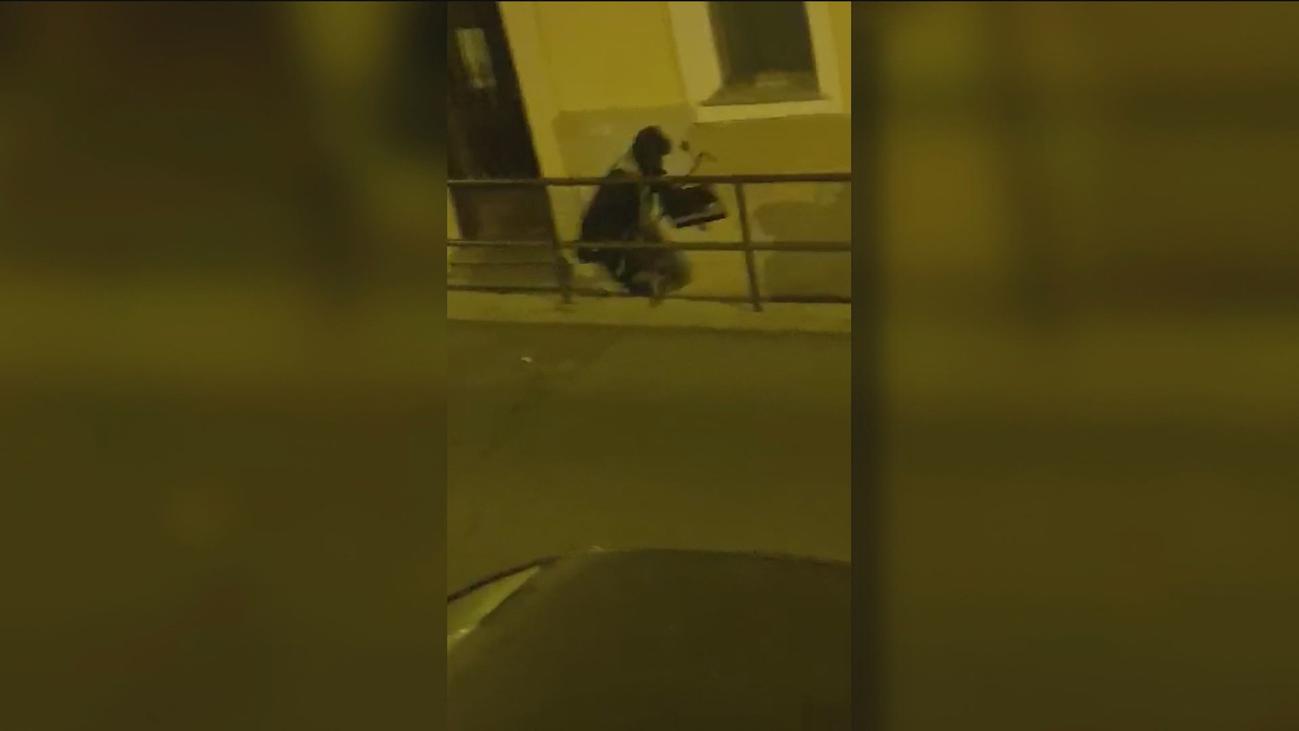 Intenta robar un restaurante en El Pardo y hace tanto ruido que despierta a los vecinos