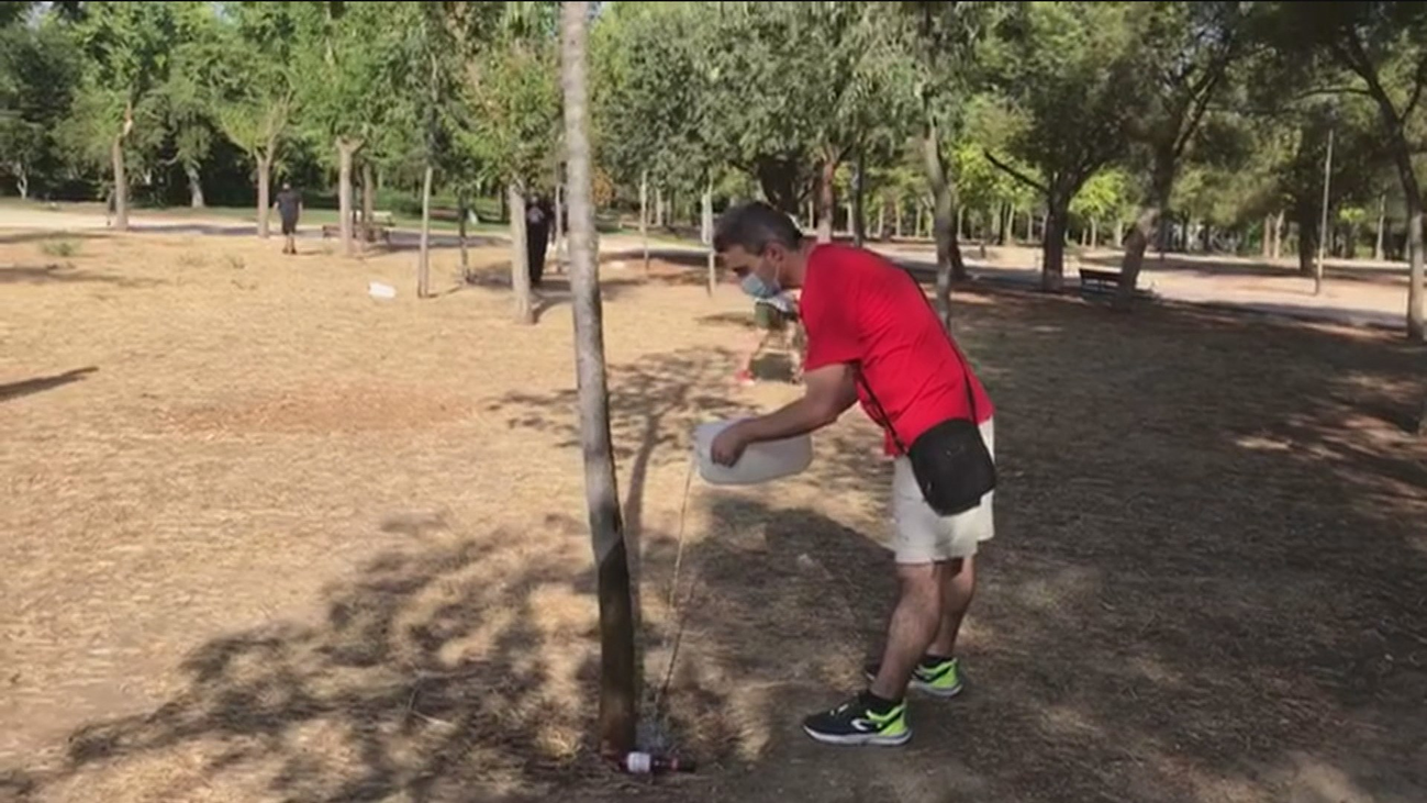 Vecinos de Carabanchel riegan los árboles del Parque de las Cruces para que no se sequen
