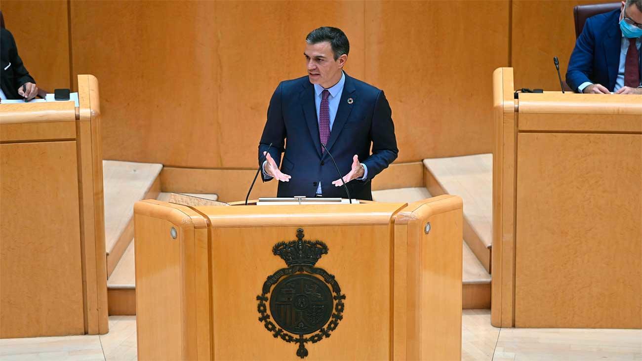 """Sánchez apela a la unidad y arremete contra el PP por su """"bloqueo"""" constante"""