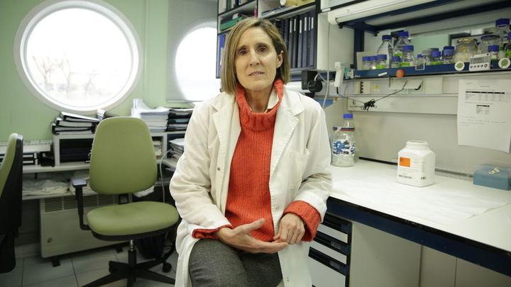 """La científica Isabel Sola: """"El virus no ha cambiado, presenta la misma secuencia con pequeñas variaciones"""""""