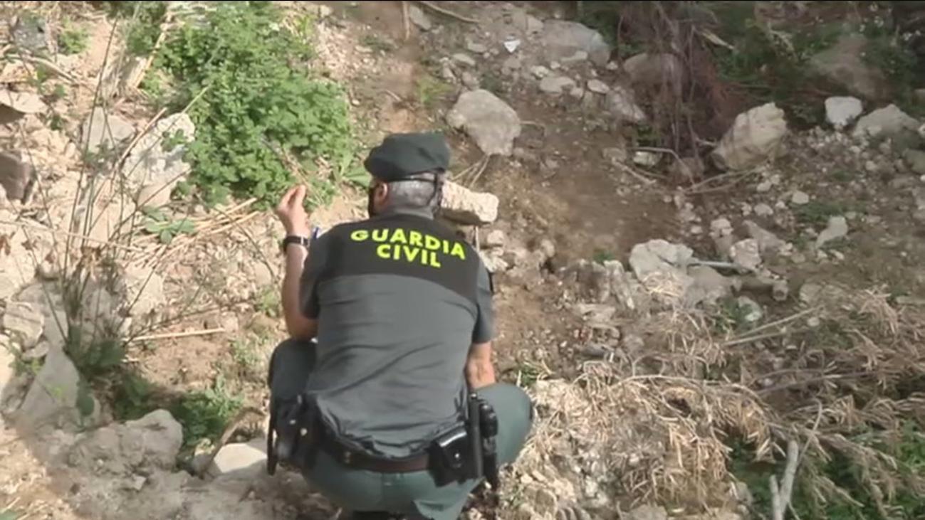 Sin rastro de la pantera negra que buscan en Granada