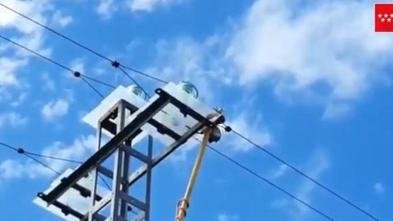 Rescatan a un Águila Calzada de un tendido eléctrico en Pedrezuela