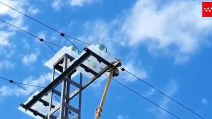 Retiran a un aguila calzada de un tendido eléctrico en Pedrezuela