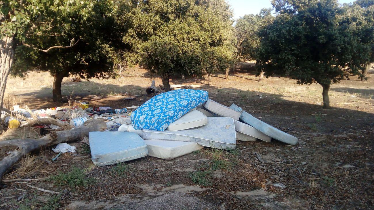 Nuevos vertidos ilegales en un encinar de Alcorcón