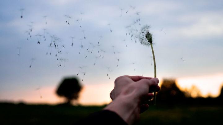Música clásica: El sonido del viento