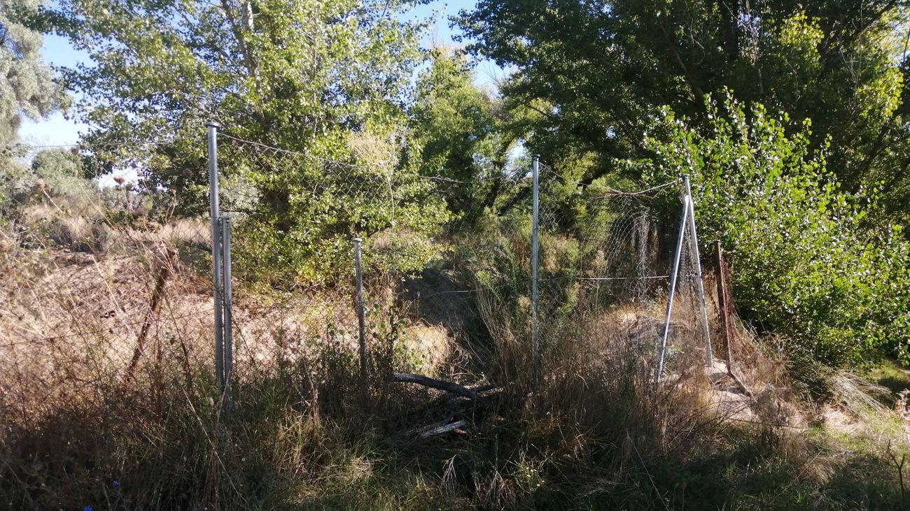 Nuevo vallado sobre el existente en el Descansadero Sur de Brunete