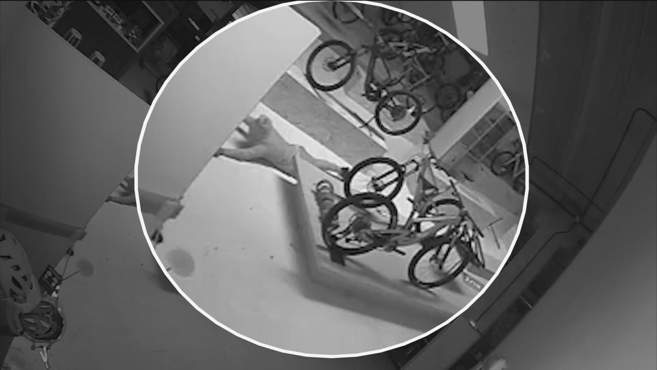 Roban 80 bicicletas valoradas en 700.000 euros en San Sebastián de los Reyes