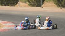 Así es el karting, la categoría base del automovilismo