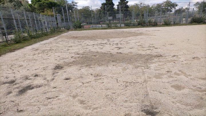 EF Madrid Sur, másque un campo de fútbol, de patatas