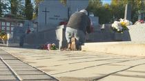 El cementerio de la Almudena se podrá visitar en Todos los Santos pese a estar en zona de restricciones
