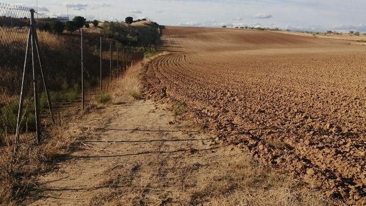 Un agricultor de Alcorcón se adueña de parte del camino de servicio de la M-50