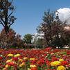 Los jardines históricos de Aranjuez declarados 'Itinerario Cultural Europeo'