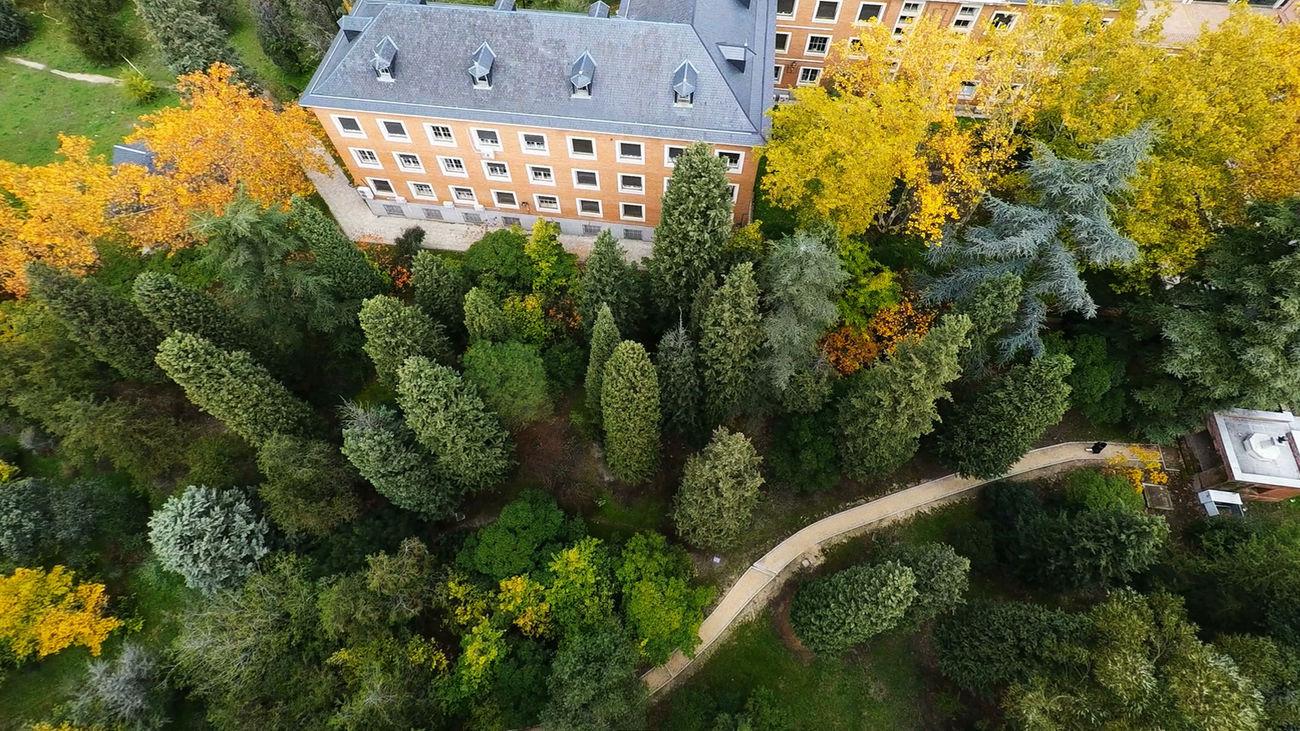 Arboreto de la Escuela de Ingenieros de Montes de Madrid