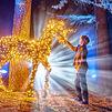 El Jardín Botánico vuelve a iluminarse por Navidad