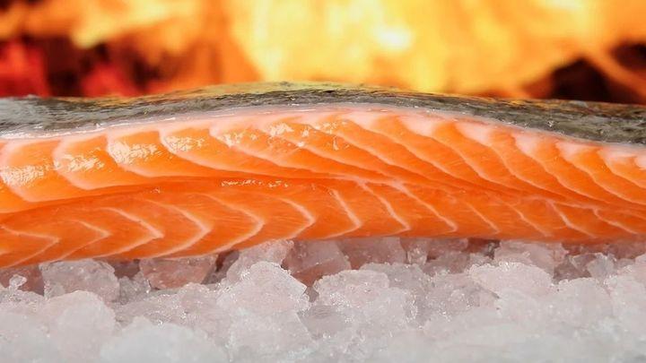 Consejos para congelar de manera correcta el pescado