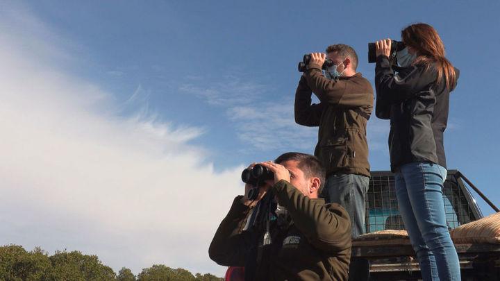 Mi cámara y yo: Turismo animal