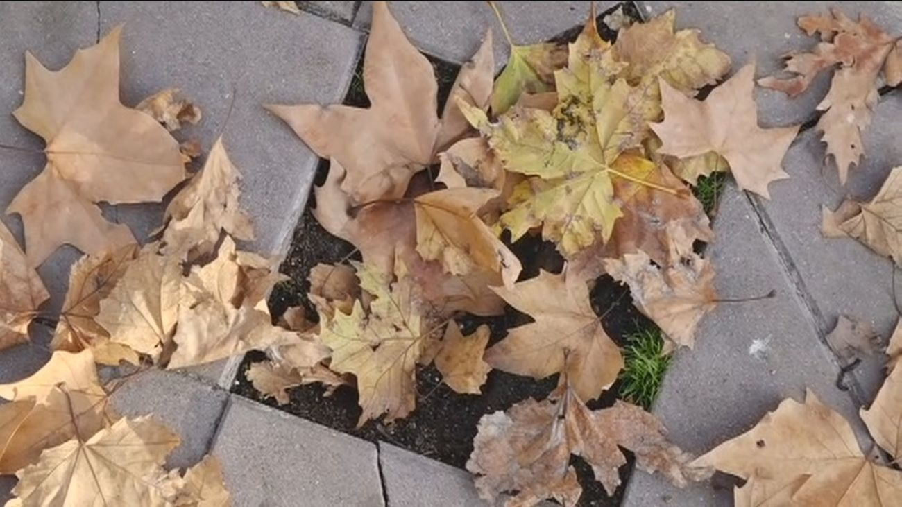 Los vecinos de Fuenlabrada denuncian el mal estado de las aceras