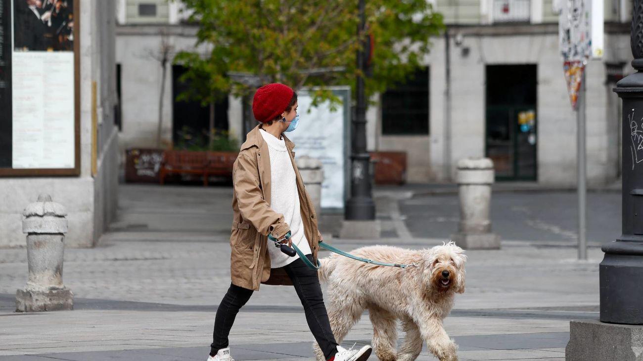 En Madrid hay más mascotas que niños menores de diez años