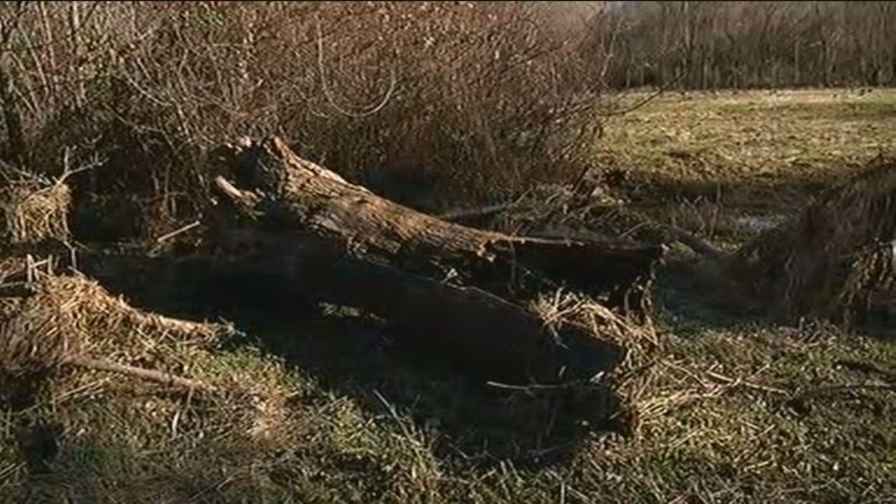 Las secuelas de las inundaciones 24 horas después en Alameda del Valle