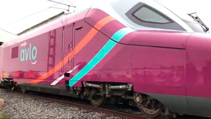 Liberalizado el transporte ferroviario, aunque Renfe seguirá en solitario hasta la llegada de competidores