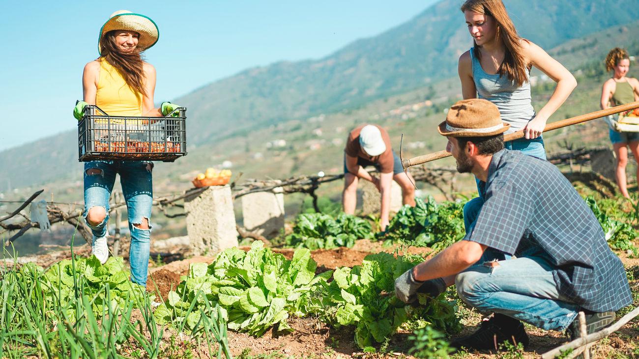 Di hola al pueblo y adiós a la ciudad con un proyecto emprendedor en zonas rurales