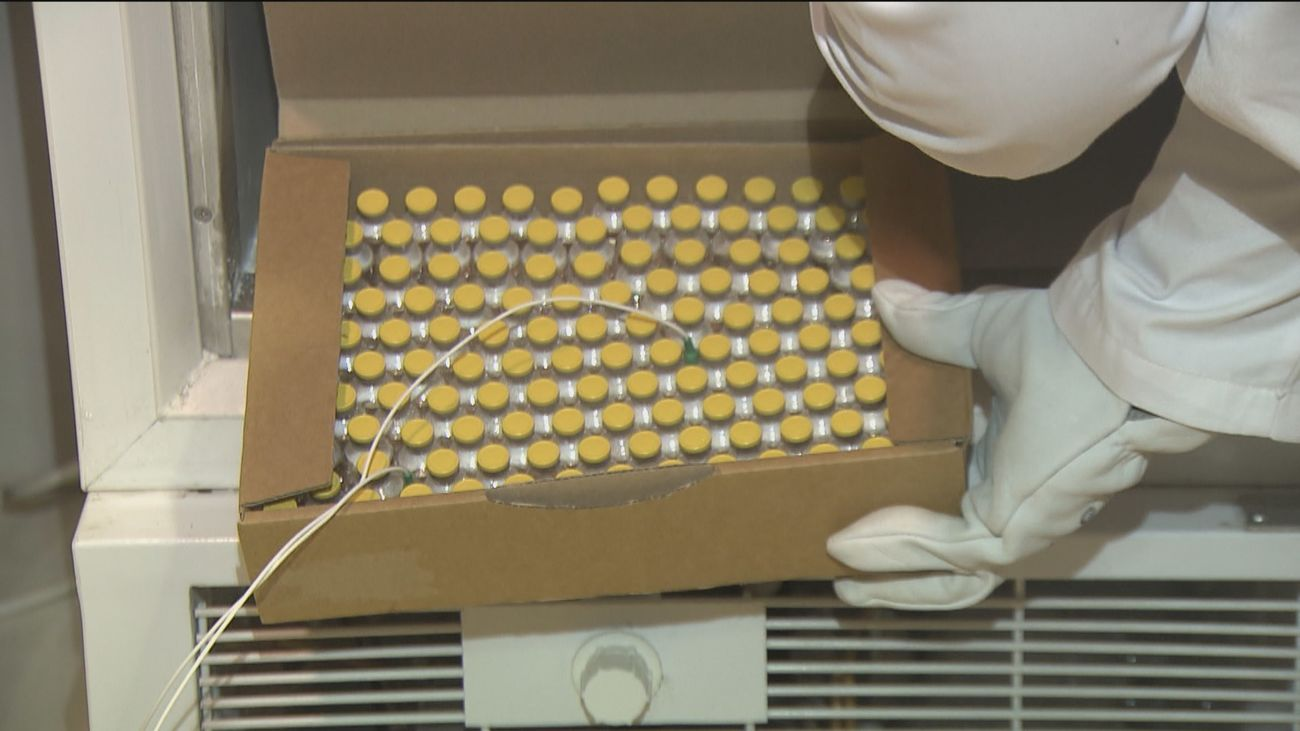 Con un embalaje de cartón y hielo seco: así se transportan las vacunas de la Covid