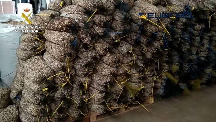 La Guardia Civil destapa una trama empresarial de pistachos ecológicos falsos en España y Francia