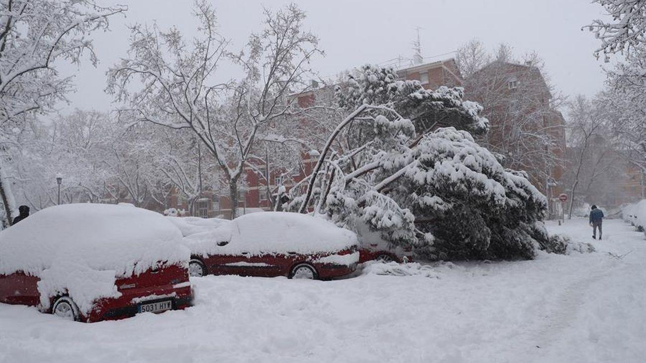 Coches sepultados por la nieve en la zona de Campamento