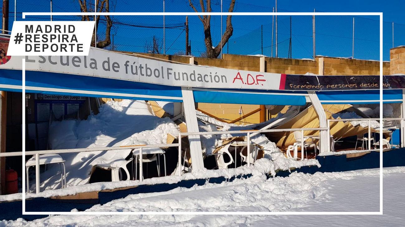El campo de la Fundación ADF
