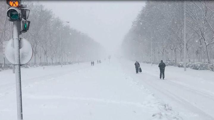 Mi cámara y yo: La nevada del siglo