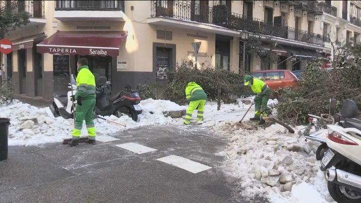 La arboleda de la calle Fuencarral, la zona más afectada por el paso de  Filomena
