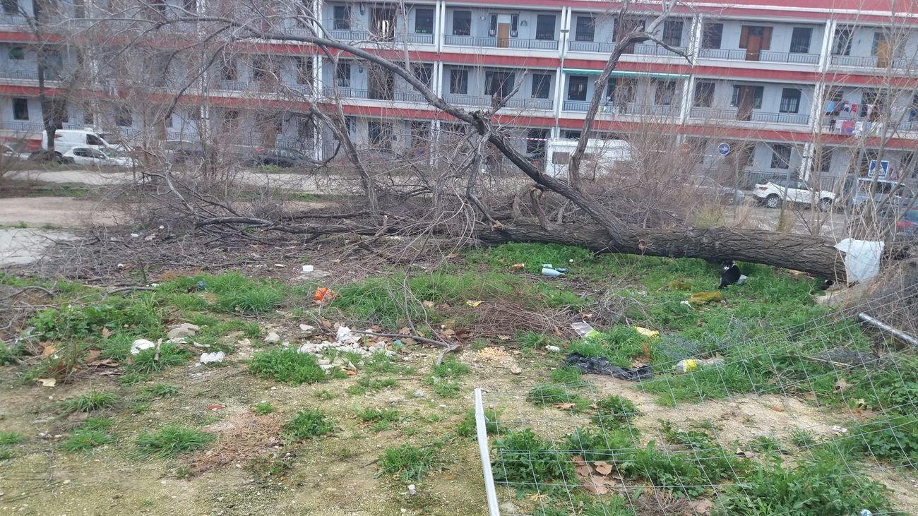 Estado del terreno sobre el que se prevé instalar el centro de salud