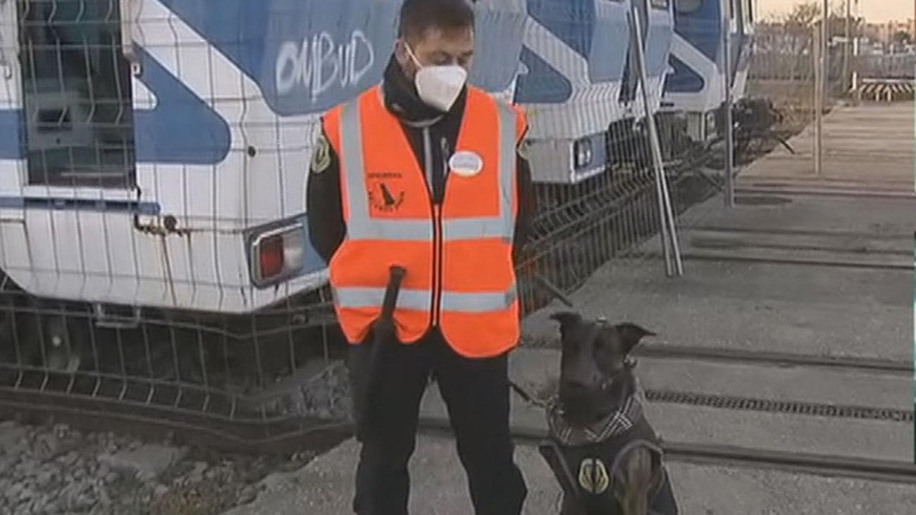 Perros para evitar que los grafiteros actúen en el metro de Madrid