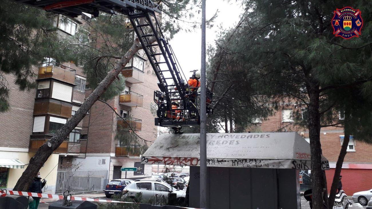 Bomberos de Alcorcón retiran ramas caídas a consecuencia de la borrasca Filomena