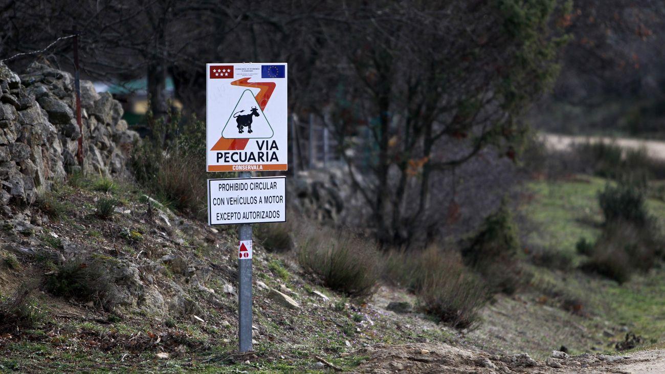Señal de vía pecuaria en la Comunidad de Madrid