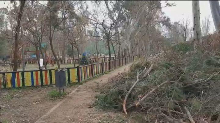 Parques destrozados en Móstoles y Leganés dos meses después de Filomena