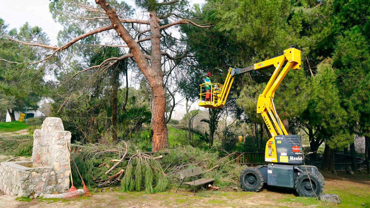 limpieza de parques en Móstoles por los daños de Filomena