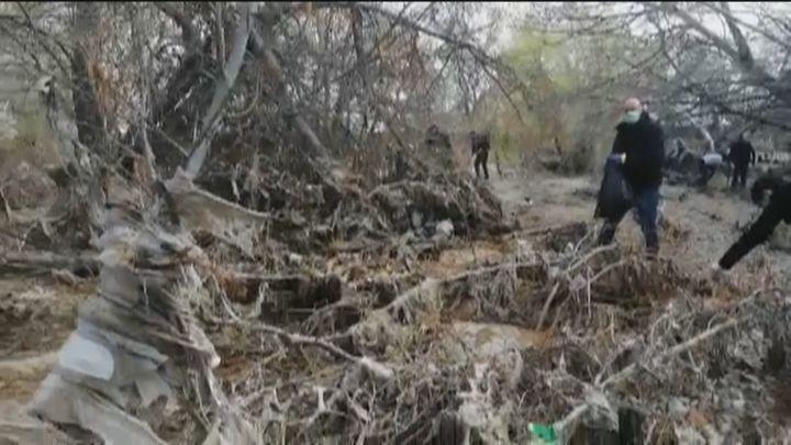 Voluntarios limpian el río Jarama atestado de toallitas que asfixian a aves, peces y árboles