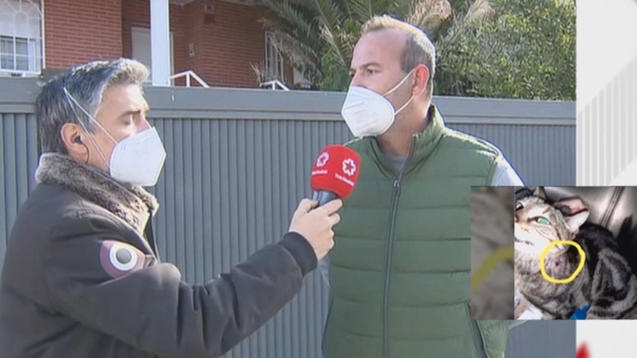 Los vecinos se movilizan para buscar al hombre que dispara a animales en Valdemorillo