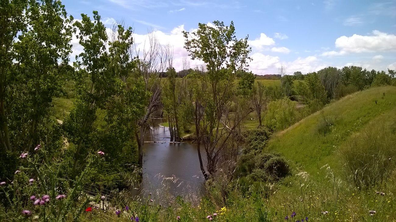 Humedal del Arroyo Meaques incluido en el arco suroeste del Bosque Metropolitano
