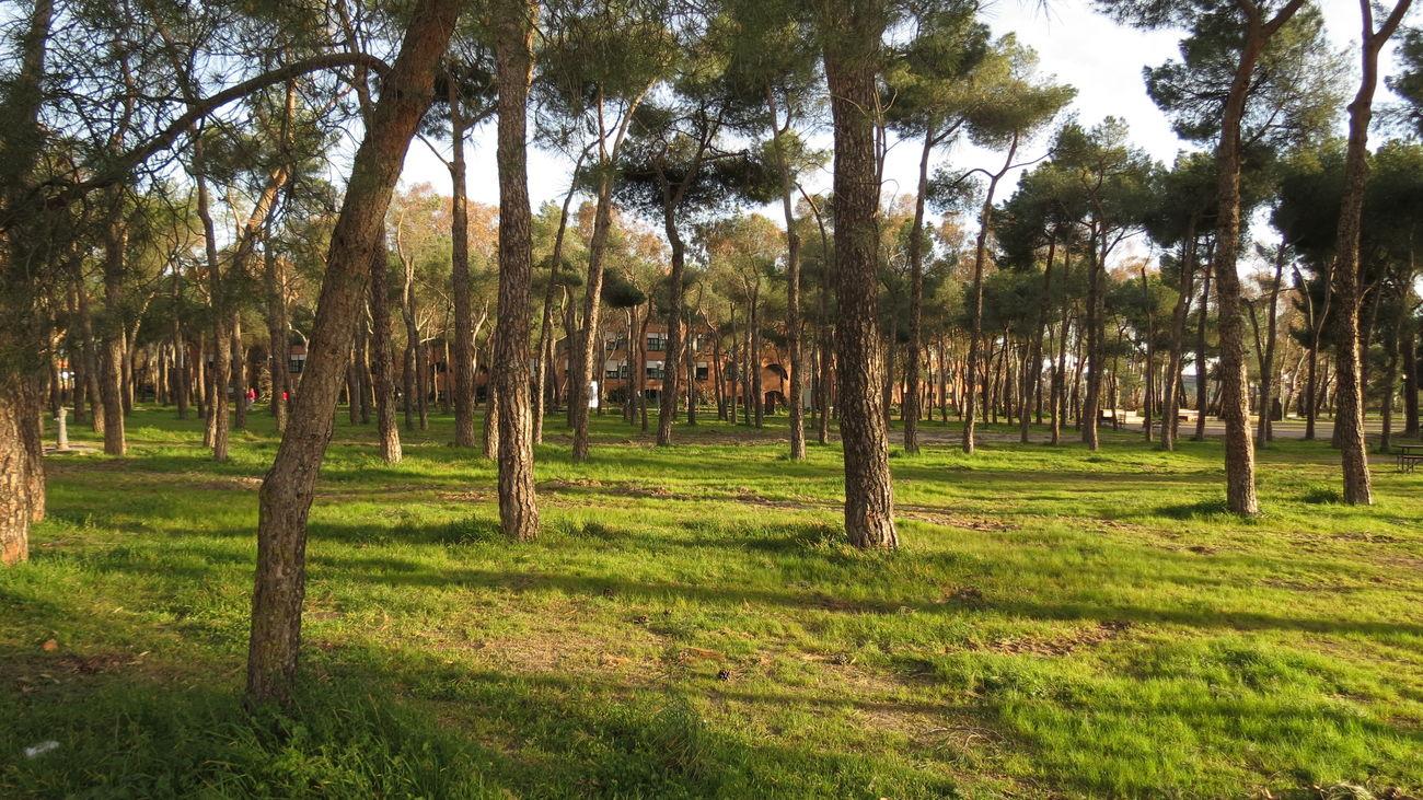 Parque de Los Frailes, en Leganés