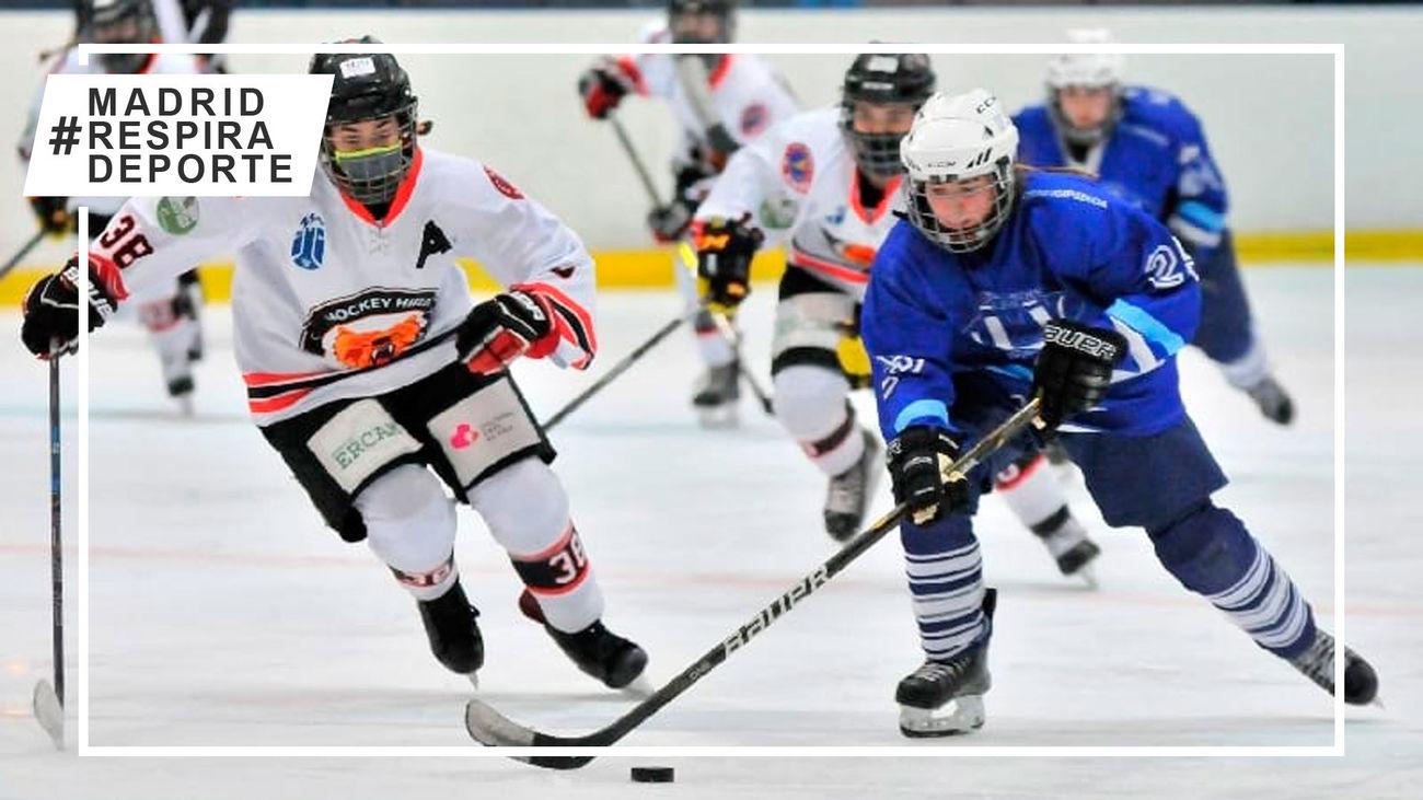 Txuri Urdin - Hockey Majadahonda