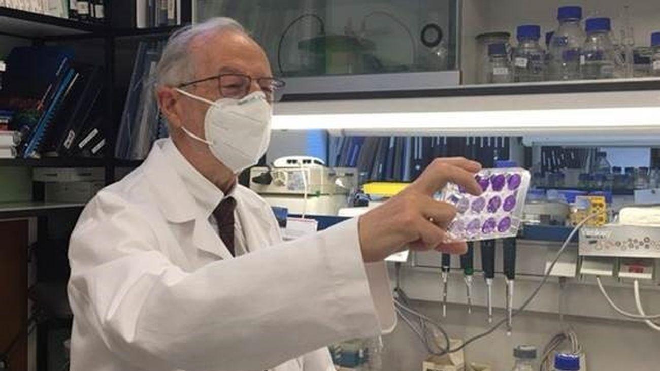 Una vacuna intranasal, de una dosis y muy potente, apuesta española contra la Covid