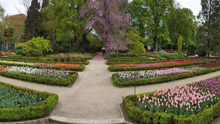 La Rosaleda del Real Jardín Botánico de Madrid  será restaurada por Chanel