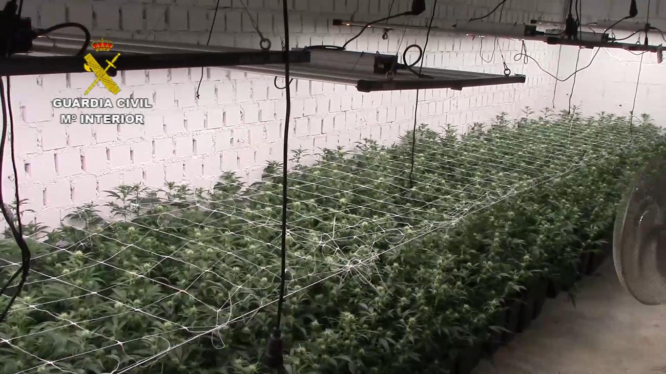 Una construcción subterránea de película para albergar una gran plantación de marihuana