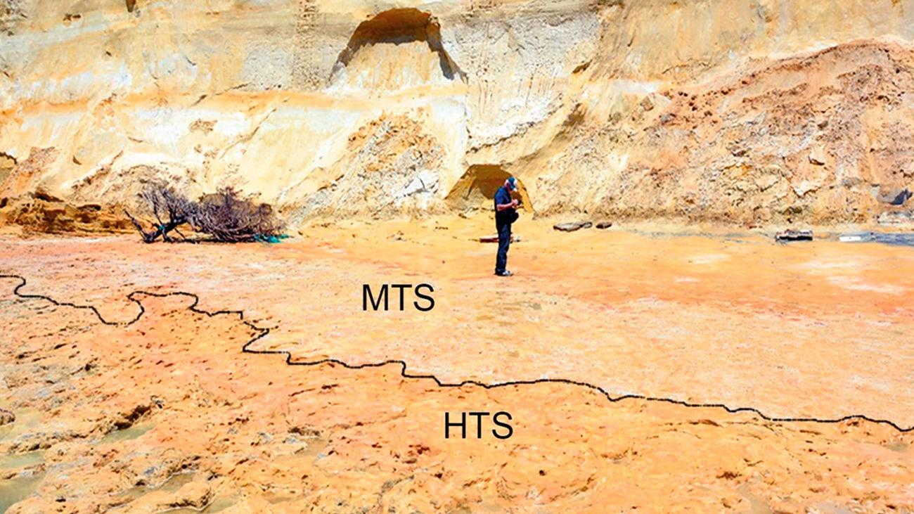 Zona de la playa de Matalascañas donde se han hallado las primeras huellas de nerdentales de la Península Ibérica