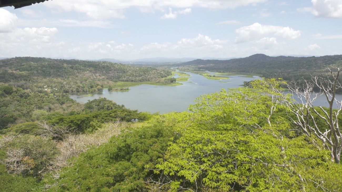 Visitamos el Parque nacional Soberanía, en Panamá