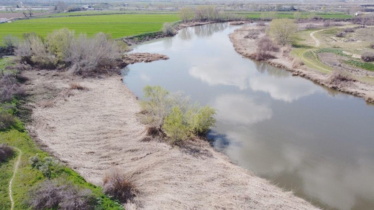 Mi cámara y yo: El río Jarama