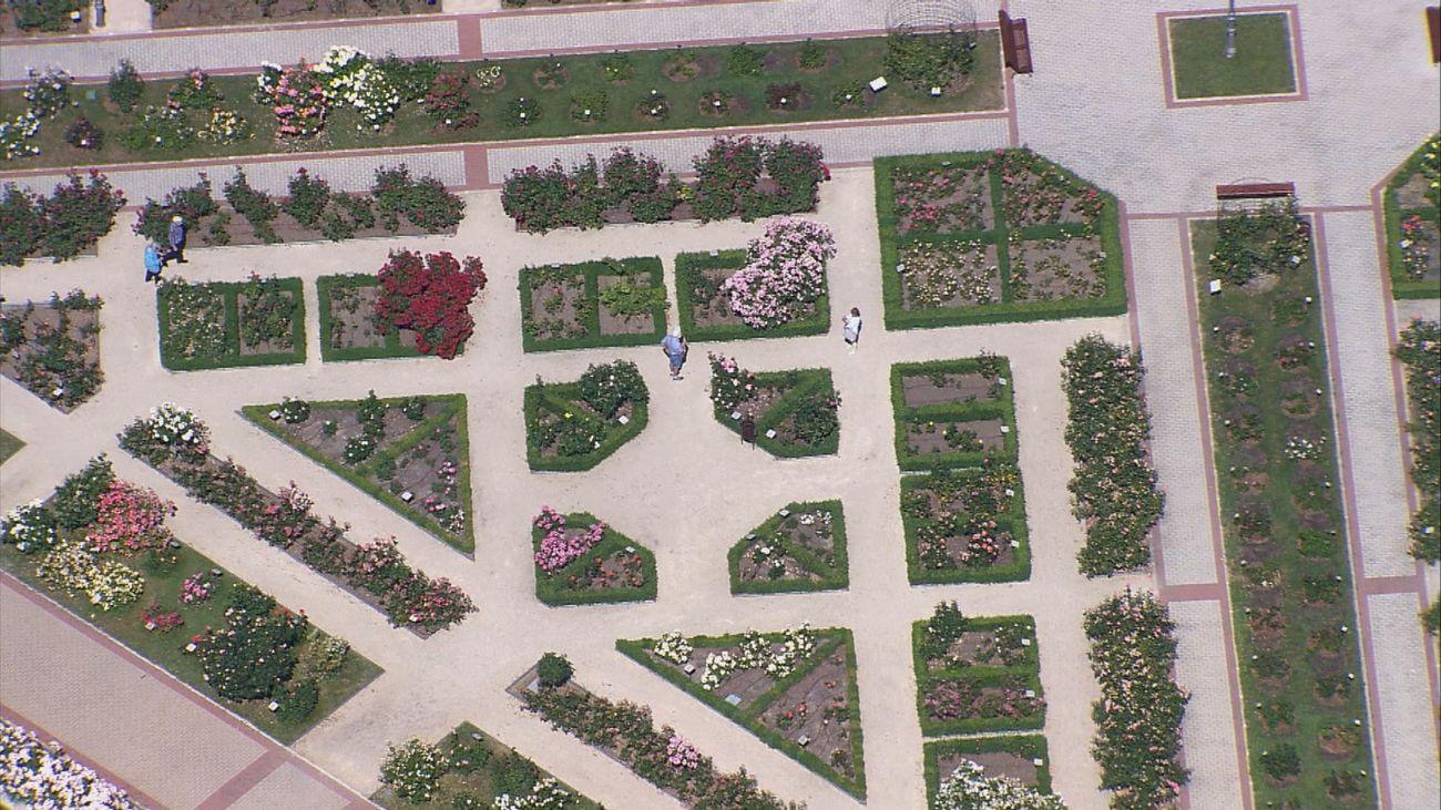 Madrid desde el aire: Madrid y sus parques